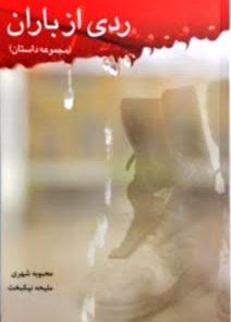 تصویر جلد کتاب ردی از باران