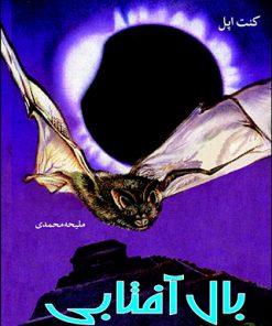 تصویر جلد کتاب بال آفتابی